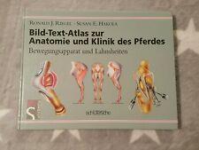 Bild-Text-Atlas zur Anatomie und Klinik des Pferdes Band 1 Lahmheit Pferd Riegel