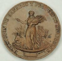 19th Rare Century Medal Alava Spain Exposition of Cattle & Agricultural Products