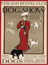 "11x14""Decoration Poster.Interior room design art.Victorian dog show.6630"