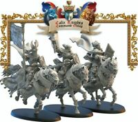 Lost Kingdom Miniatures Kingdom of Mercia Calix Knights Command Kings of War