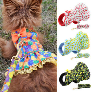 Dog Harness and Leash Set Breathable Vest Soft Mesh Padded Dress for Small Dogs