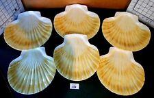 6 Melmac Melamine SEASHELL Plates