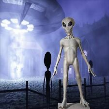 ROSWELL UFO SPACE ALIEN LIfe Size Haunted House Halloween Decoration & Prop