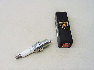 Lamborghini Genuine Gallardo / Huracan LP Series Spark Plug OEM # 06H905601C
