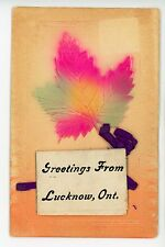 Greetings from LUCKNOW ONTARIO Rare Fold-Out Novelty Multiview Embossed PC 1910s