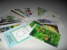 Multi-Coloured Scrapbooking Stickers
