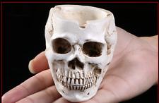 Ashtray Skeleton Human Head Skull Halloween Fossil Resin Model Toys Gift