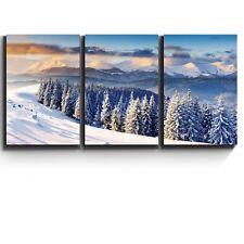 "3 Piece Canvas Print - Snowy mountain silent winter scene - 16""x24""x3 Panels"