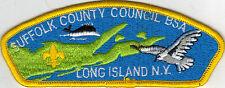 Suffolk County Council (S-1d) CSP, First Council CSP, Mint!