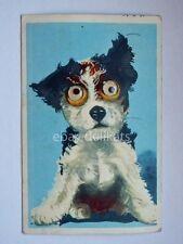 CANE DOG vecchia cartolina occhi mobili