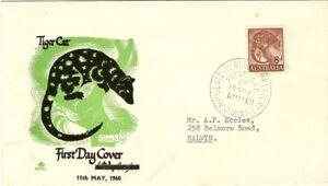 Royal Cover Tiger Cat (Green) FDI Addressed
