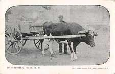 Digby Nova Scota Canada Ox-o-Mobile Ox Cart Antique Postcard J63354