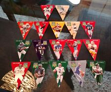 (17) 1996 Playoff Contenders Felt Pennants NFL Football