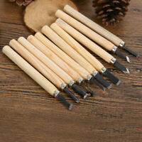 1 set of 12 Wood carving Hand Chisel Tool For Woodworking Kit Gouges C0X4