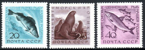 Russia 2375-2377, MNH. Pikepearsh, Fur seals, Ludogan whitefish, 1960