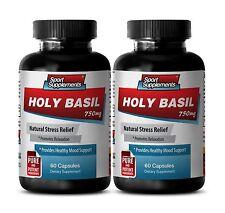 Anti-Stress Formula - Holy Basil Extract 745mg - Magnesium Supplement 2B