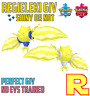 6IV REGIELEKI ⚔️ SHINY or NOT 🛡 SWORD & SHIELD ⚔️🛡 Legit & Perfect