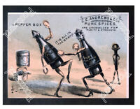 Historic Andrews & Company Spices Ca 1875 Advertising Postcard