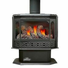 Gas-Fired Heating Stove