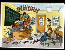 SCOUTS de FRANCE / avec animaux à l'ECOLE ,,, illustrée par Bernard DUFOSSE
