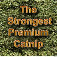 1/2 oz KwayzeKatz™ Canadian CATNIP FINE GRIND Very Potent (no stalks )  14g