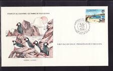 Alderney  Aurigny  faune oiseaux macareux vieux port 1983
