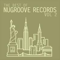 VARIOUS ARTISTS - THE BEST OF NU-GROOVE RECORDS, VOL. 2: TECHNO & HOUSE USED - V