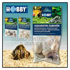 Hobby NATURAL HERMIT CRAB SEA SHELLS SET Jumbo Variety Marine Reef Fish Aquarium