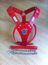 Staffordshire Bull Terrier Staff Staffie, Staffy Harness Wid Free Lead Red