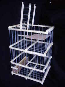 Parrot Pigeon and Big  Birds : : Trap Cage