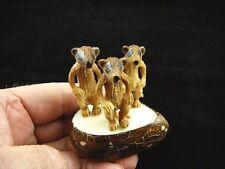 (TNE-MEE-334A) MEERKAT meerkats TAGUA NUT Figurine carving VEGETABLE I LOVE palm