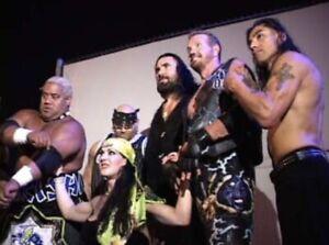 101 REASONS NOT TO BE A PRO WRESTLER DVD Wrestling Documentary wwf wwe ecw