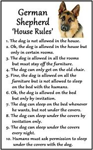German Shepherd 'House Rules' Flexible Magnet. Sticks to any flat metal surface