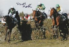 Niall Madden Hand Signed 12x8 Photo Numbersixvalverde 2006 Grand National 1.