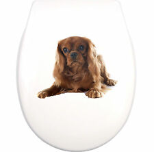 CAVALIER KING CHARLES SPANIEL WC Aufkleber toilet sticker  waterproof K2