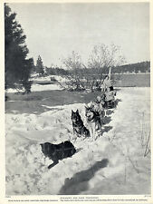 ESKIMO SLED DOG TEAM AND TWO LADIES ON LAKE ARROWHEAD CALIFORNIA 1934 DOG PRINT