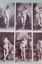 CALAVAS ETUDE DE NUS  TIRAGE ALBUMINE ALBUMEN VINTAGE PRINT 1880 PEINTURE ref6