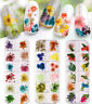 3D Real Dried Dry Flowers Nail Art Decoration Design DIY Tips Manicure 12 Colors