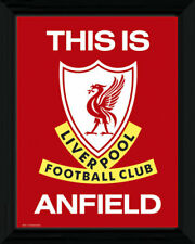 Liverpool This Is Anfield Football Soccer Framed Poster Print 40x30cm | 12x16 in