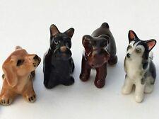 Adorable 4 Miniature dogs Dachshund Fox Terrier Siberian Husky Schnauzer