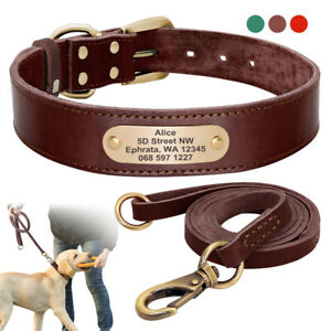 Genuine Leather Personalized Dog Collar & Leash set With Custom Brass Nameplate