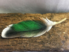 Waterfowl & Songbird Duck Carver Hand-made Wood Feather Pin/Brooch