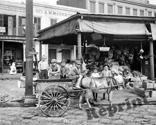 Photograph of a New Orleans Louisiana French Market Wagon Year 1908 8x10