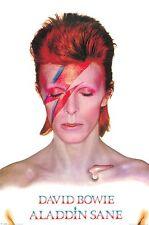 David Bowie - Brand New Licensed Maxi Poster 61 x 91.5cm - Aladdin Sane