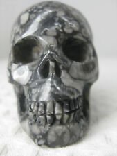 """2.0"""" Carved Crinoid Fossil, Realistic Crystal Skull, Goth Cultural Item & Decor."""