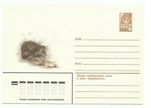 Russia. USSR. Cover with printed stamp Mushrooms and hedgehog. 09.10.1979