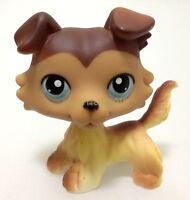 Hasbro Rera Littlest Pet Shop #58 Brown Collie Dog Puppy Blue Eyes LPS Toys  T