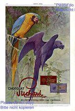 SUCHARD CIOCCOLATO XL insegne 1913 PAPPAGALLO ARA uccelli foresta vergine Pubblicità MOLTO RARO