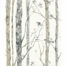 Rmk9047Wp Birch Trees Peel and Stick Wallpaper Free Shipping