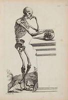 Vintage Anatomy Medical Human Skeleton Painting Chart Real Canvas Art Print New